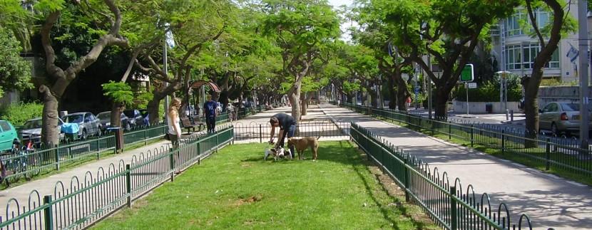 Tel Aviv's Rothschild Boulevard