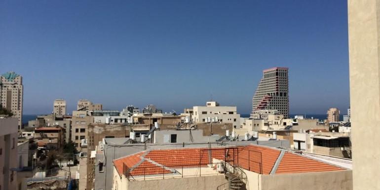 HaAri view-min