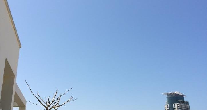 HaAri view1-min