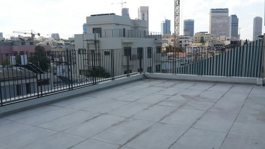 Brand New Duplex Penthouse