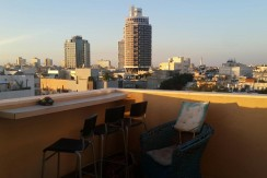 Charming Duplex Rooftop Apt in Nice Building in City Center