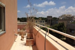 Charming Duplex Apt in Heart of the City