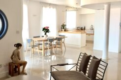 Beautiful Penthouse for Rent in Jaffa